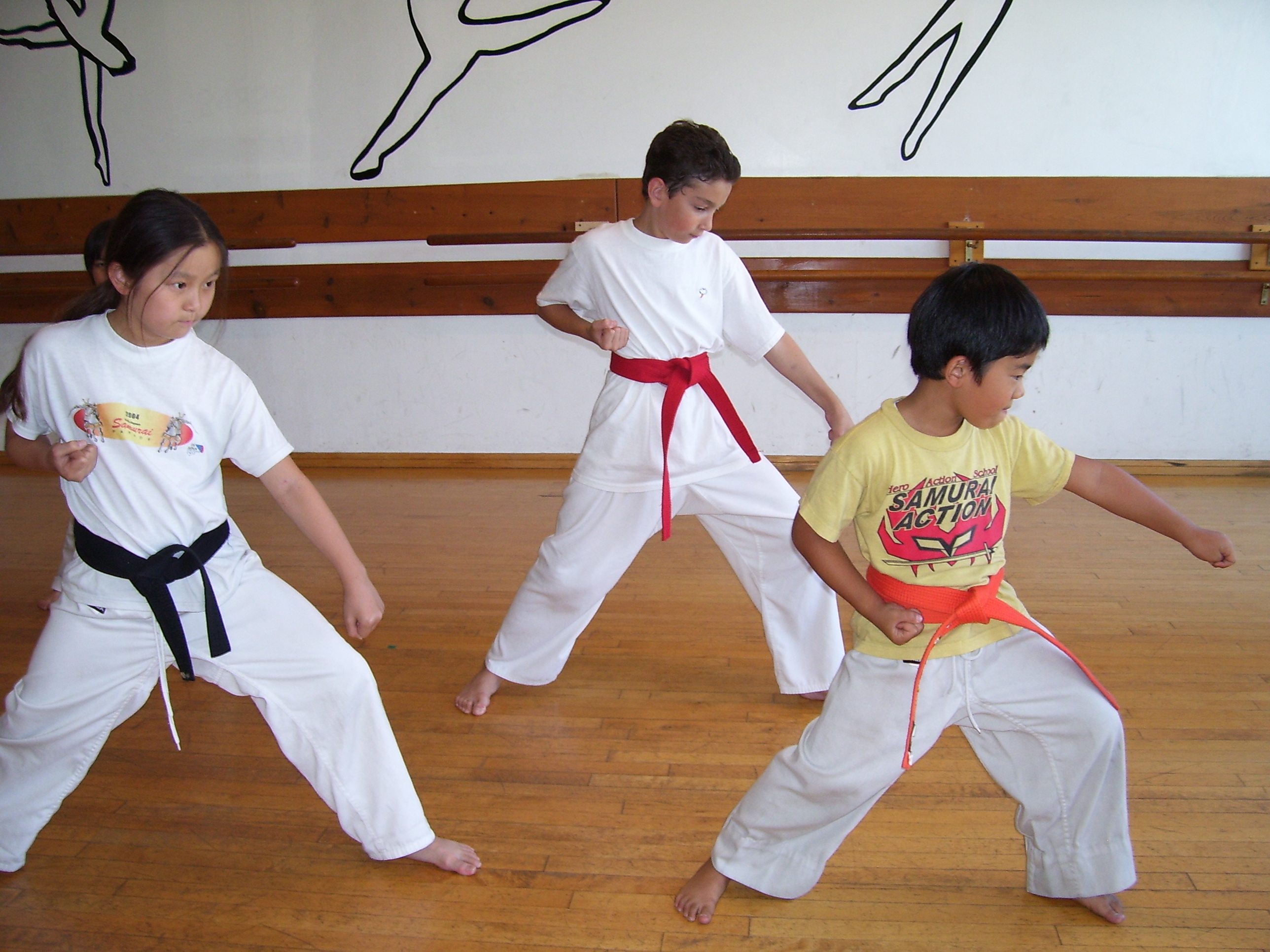 Samurai Karate Studio